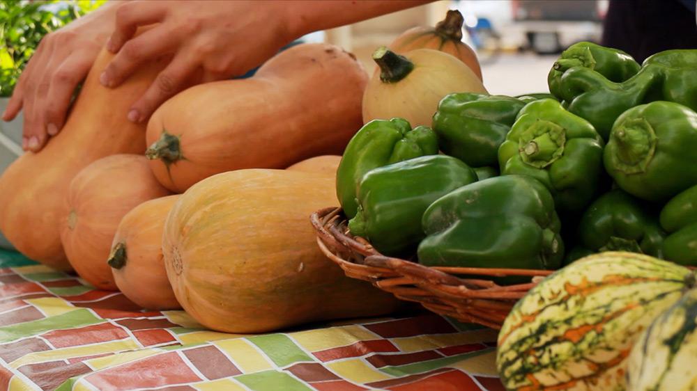 Feria_de_la_huerta_organica_San_Juan2