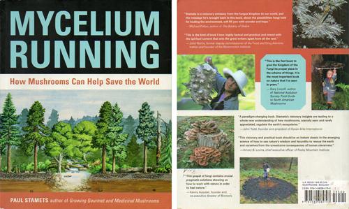 couv-mycelium-running